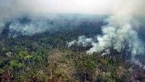 Forças Armadas iniciam combate a incêndios na Amazônia