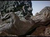 Un Million d'années avant J.-C.