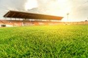 Des stades de foot écolo c'est pour bientôt ?