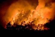 Les incendies hors norme vont devenir de plus en plus fréquents