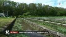 Solidarité : un financement participatif pour l'installation des jeunes agriculteurs