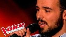 Julien Doré – Paris-Seychelles   Benjamin   The Voice France 2015   Blind Audition