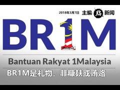BR1M是礼物,非糠麸或贿赂