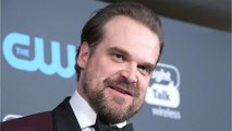 David Harbour will officiate a wedding, because there's nothing he won't do with enough RTs