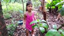 Jeu Visiter le Jardin de la Maison, le Bébé de Beurre - Bébé-de la Cueillette Et de découvrir Les Types de Résultats  Bébé Beurre TV