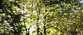 LES PLUS BELLES ANNEES D'UNE VIE : Bande annonce du film de Claude Lelouch - Bulles de Culture