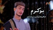 New Ramzan Naat 2019 - Ho Karam - Muhammad Nayab Noshahi - New Ramzan Naat, Humd 1440/2019