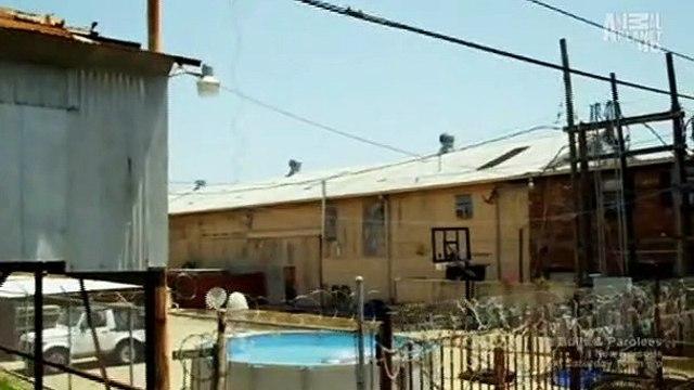 Pit Bulls And Parolees S04E07