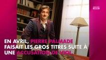 Pierre Palmade : comment Michèle Laroque l'a aidé avec ses addictions