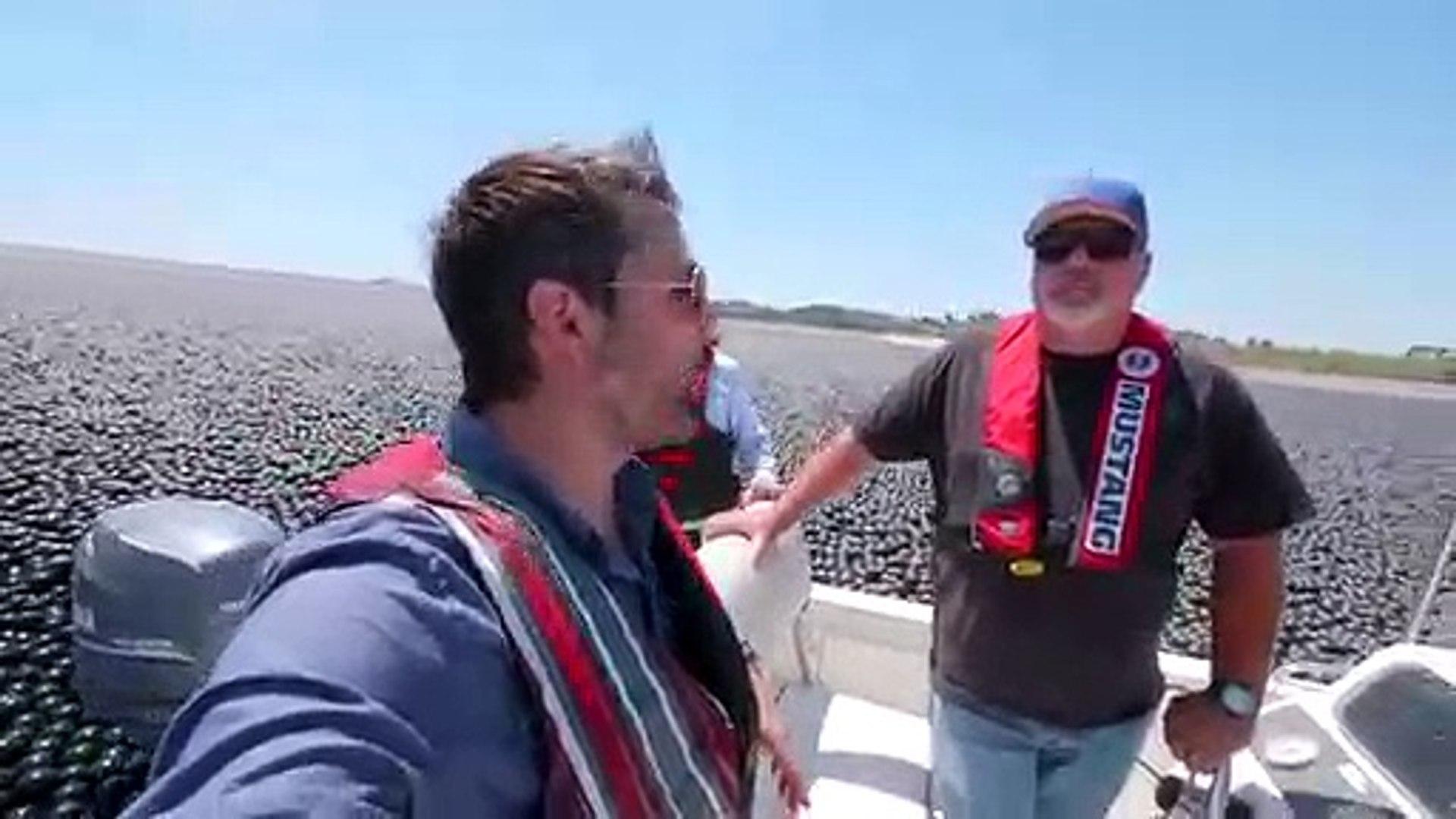 Pourquoi y a-t-il 96 millions de boules noires dans ce réservoir d'eau potable ? (Los Angeles)