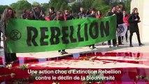 """Action """"coup de poing"""" d'Extinction Rebellion au Trocadéro"""