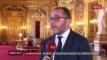 RN: « La démocratie doit pouvoir se défendre contre Steve Bannon » plaide Rachid Temal