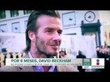 David Beckham se queda sin permiso de conducir durante seis meses | Noticias con Francisco ZeaZea