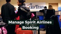 Spirit Airlines Reservations Number 1800 273 3602 For Flight Booking