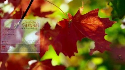 Raag Ahir Bhairav || Instrumental Sarangi || Ustad Mohammad Sagiruddin Khan || Bihaan Music