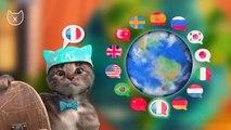 Little Kitten My Favorite Cat Care - Little Kitten Preschool Fun Learn Colors & Animals Gameplay