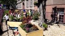 Saint-Louis : les écoliers créent leur jardin pédagogique