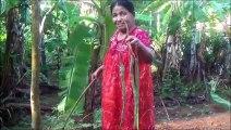 Village des Aliments - Cuisson des Pilons avec des Oeufs dans mon Village par ma Maman