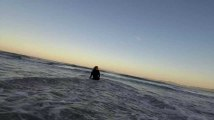 Landes : un requin sème la panique pendant un cours de surf