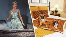 Doris Day Owned One of the Most Pet-Friendly Hotels