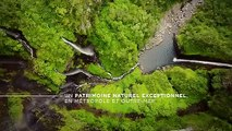 La biodiversité, c'est la vie !