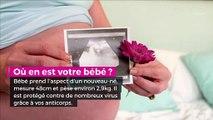 36 semaines de grossesse