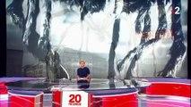 États-Unis : Louise Bourgeois pourrait devenir l'artiste féminine la plus chère de l'histoire