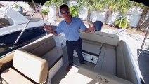 2019 Sea Ray 250 SDX Outboard at MarineMax St. Petersburg, Florida