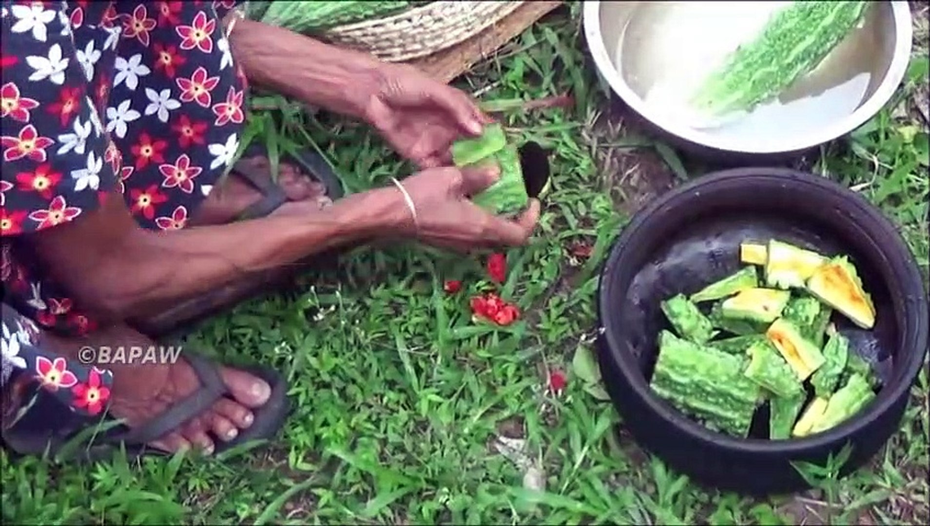 Sain Village des Aliments - Cuisson de la Courge Amère Curry dans mon Village par la grand-mère