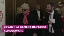 COUP DE FOUDRE EN TOURNAGE. Penélope Cruz et Javier Bardem, la love story à troi...