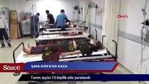 Minibüs devrildi: Tarım işçisi 13 kişilik aile yaralandı