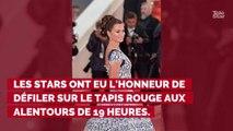 PHOTOS. Cannes 2019 : Penélope Cruz, Nagui et son épouse Mélanie Page... revivez la montée des marches du 17 mai