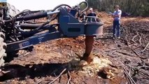 Hug Mega Machines!!...Extreme Bulldozer Forest Clearance Equipment Look So Seriously(1)