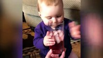 Fun and Fails ! Funniest Babies Trouble Maker  8  Funny Babies and Pets