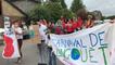 Carnaval des coquelicots contre les pesticides