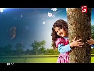 Nihanda Dhoni 18-05-2019