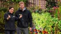 Meghan and Harry living Good Life at Frogmore Cottage as they install an organic vegetable plot