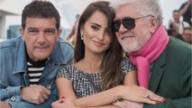 """Almodovar's Latest Film """"Pain And Glory"""" Will Be Hit Cannes"""