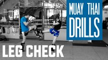 Muay Thai Drills - Leg Check & Counterattack