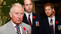 Dapper royals Prince Charles, William & Harry don matching tuxedos for joint engagement