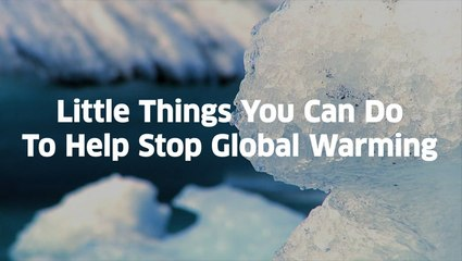 Little Things You Can Do To Help Stop Global Warming