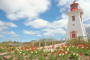 Canada: Everything to know about Prince Edward Island