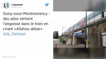 Val-d'Oise. Des ados crient « Allahou akbar » dans un train et sèment la panique