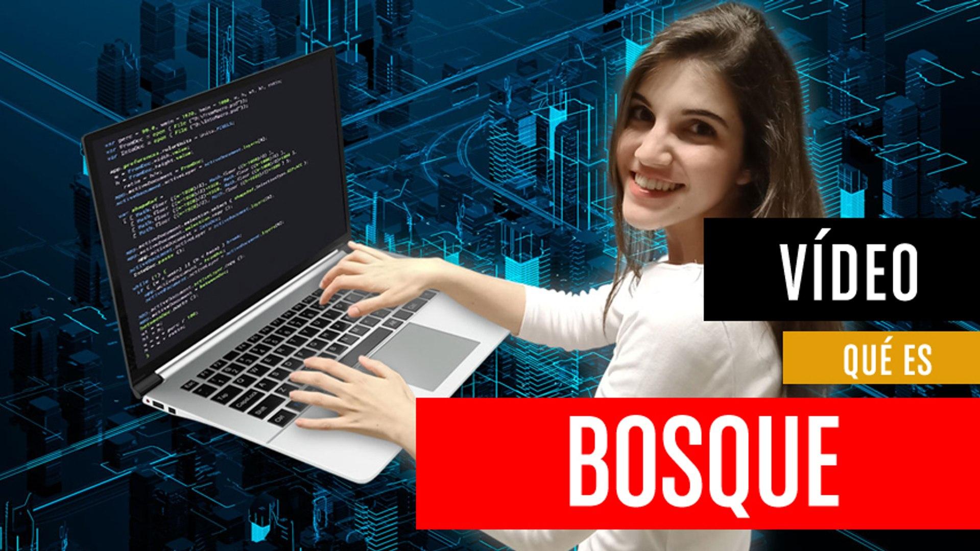¿Qué es Bosque?