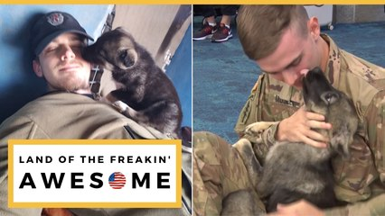 Soldier Reunited With Syrian Puppy Adopted After Deployment