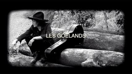 Jean Leloup - Les goélands (Version karaoké)