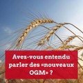 """Avez-vous entendu parler des """"nouveaux OGM"""" ?"""