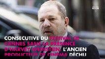 Harvey Weinstein : son ancien chauffeur à Cannes témoigne des violences contre les hommes
