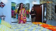 Mohabaat Zindgi He (Episode 443)