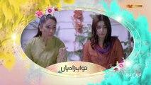 Nawab Zadiyan (Episode 39)